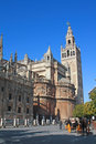 Cathedral and giralda seville view of with the in the background to the right the typical pony car to walk to tourists Royalty Free Stock Photo