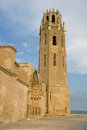 Cathedral of Lleida Royalty Free Stock Photo