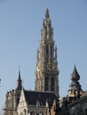 Cathedral of our lady in antwerpen with view from groenplaats Stock Images