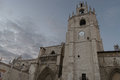Cathedral of Palencia Royalty Free Stock Photo