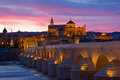 Cathedral and roman bridge at night cordoba old mezquita andalusia spain Stock Images