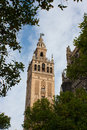 Cathedral of saint mary of the see seville spain view Royalty Free Stock Images