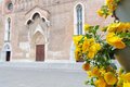 Cathedral santa maria maggiore of udine italy with yellow flowers the roman catholic in foreground Stock Images