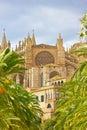Cathedral of santa maria of palma de mallorca la seu spain the Royalty Free Stock Photography