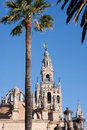 Cathedral seville bell tower of the in Stock Photos