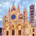 Cathedral of siena duomo di italy Royalty Free Stock Photos