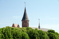 Cathedral tower at blossoming gothic and roof behind chestnut trees in kaliningrad russia Stock Photography