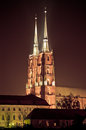 Cathedral in Wroclaw, Poland Royalty Free Stock Photo