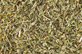 Catnip dried or catmint can be used as a herbal tea or playful response in felines Stock Photo