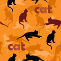 Cats black and red on orange background Stock Photography
