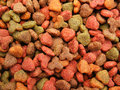 Cats (dogs) food detail close-up Stock Photo