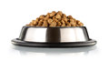 Cats and dogs food dry in the stainless steel bowl Stock Photography