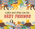 Cats and dogs pets friends hugs frame border card sign. Royalty Free Stock Photo