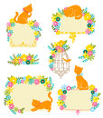 Cats and flowers Royalty Free Stock Photo