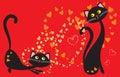 Cats play love Royalty Free Stock Photo
