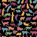 Cats seamless pattern. Kitten silhouette background