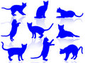 Cats silhouette Royalty Free Stock Image