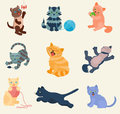 Cats vector set collection different cats kitty kitten play in defferent pose character illustration Royalty Free Stock Photo