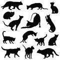 Cats vector silhouettes collection