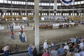 Cattle contest at Iowa State Fair Royalty Free Stock Images