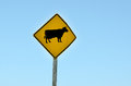 Cattle crossing road sign a warning alerts motorists to free ranging the in new zealand horizontal Royalty Free Stock Photos