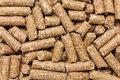 Cattle feed detail Royalty Free Stock Photo