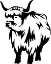 Cattle highland black and white illustration Royalty Free Stock Image