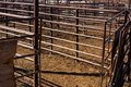 Cattle Pen Royalty Free Stock Images