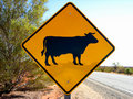 Cattle Sign on roadway Royalty Free Stock Photo