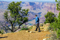 Caucasian man in mid forties cautiously looking over cliff at gr grand canyon arizona Stock Photography
