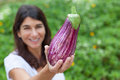 Caucasian woman holding eggplant tight shot of being held by caucasion female hands of green foliage background Stock Photos