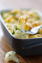Cauliflower baked with egg and cheese dill Stock Images