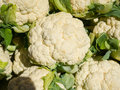 Cauliflower fresh at the farmers market Royalty Free Stock Photos