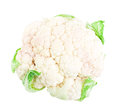 Cauliflower isolated on white background Royalty Free Stock Photography