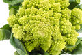 Cauliflower romanesco fresh on white background Royalty Free Stock Photography