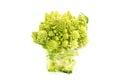 Cauliflower romanesco fresh on white background Stock Photos