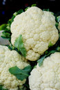 Cauliflowers vegetable the closeup of fresh Royalty Free Stock Photos