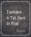 Cause of fear Seneca quote Royalty Free Stock Photo
