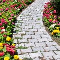Causeway and flower bed colorful Royalty Free Stock Photos