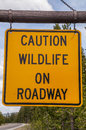 Caution wildlife on roadway sign widlife in yellowstone national park to warn visitors of potential danger Stock Photography