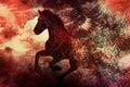 Cavallo scuro di fantasia Fotografia Stock