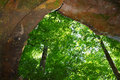 Cave Spring - Natchez Trace Parkway Royalty Free Stock Photo