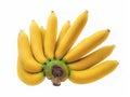 Cavendish banana isolated on white Stock Image