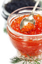 Caviar red and black over white Royalty Free Stock Photo