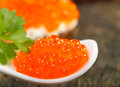 Caviar salmon roe on spoon Stock Image