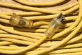 Cavo di estensione giallo. Immagini Stock