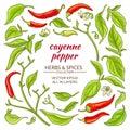 Cayenne pepper elements set