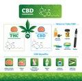 CBD vector illustration. Labeled medical THC cannabis benefits infographics