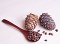 Cedar cones with spoon and seeds Stock Photo
