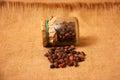 Cedar nuts in a glass vessel Stock Photos